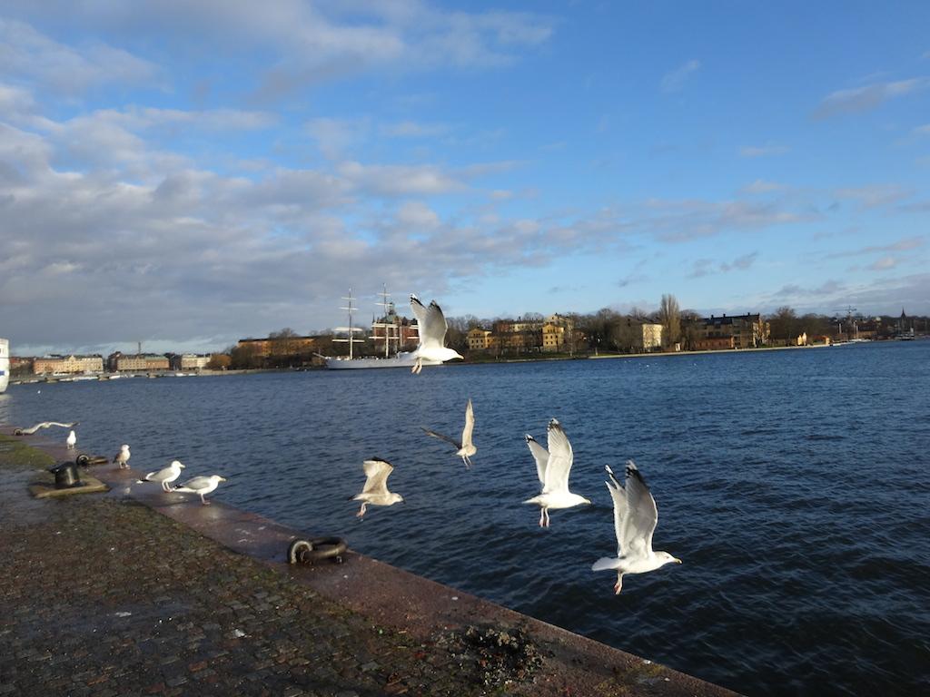 Barcelonogy-Stockholm.2