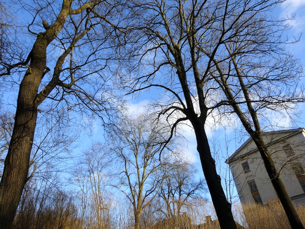Barcelonogy-Stockholm.4